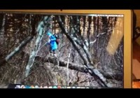 Ведущая «Орла и Решки» Регина Тодоренко упала в семиметровый ров